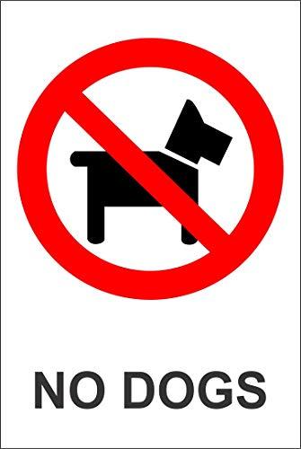 Etiqueta - Seguridad - Advertencia - No dogs safety sign 600mm x 400mm - oficina, empresa, escuela, hotel
