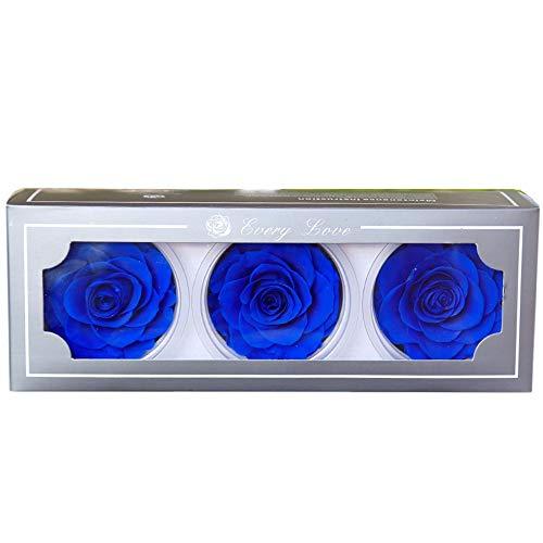 Rosa Eterna Grande,Rosa Eterna 3PC,Flores Preservadas Grande,Caja de Rosas,Regalo para Mamá Novia Mujer Día de San Valentín Navidad Aniversario (Dark Blue)