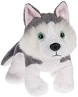 Webkinz Siberian Husky