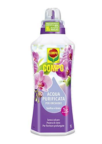 Compo Acqua Purificata per Orchidee, senza Calcare e Povera di Cloro, per Fioriture Intense e Durature, 1 Litro