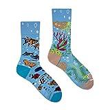 Spox Sox Casual Unisex - des chaussettes colorées coton pour les individualistes - multicolores, drôles, fantaisie, originales chaussettes - amusantes cadeau, 44/46, Aquarium