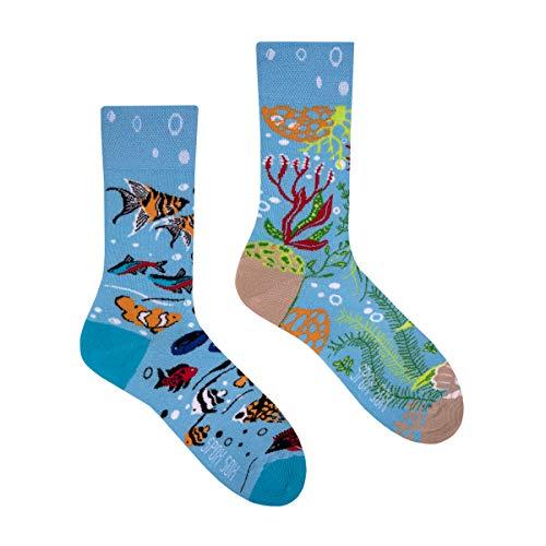 Spox Sox Casual Unisex - mehrfarbige, bunte Socken für Individualisten, Gr. 40-43, Aquarium