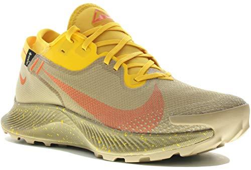 Nike Men's Pegasus Trail 2 Gore-TEX Gymnastics Shoe, Dark Sulfur Beige, 6 UK