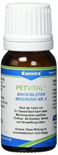 Canina Bach-Blüten No. 6, 1er Pack (1 x 10 g)