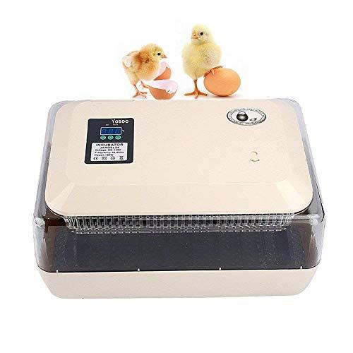 LULUTING Incubadora del Huevo, Huevo Hatcher Digital automático 24 Huevos for incubar de la máquina de Control de Temperatura for el Pollo codornices Palomas