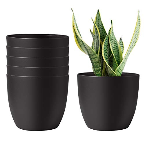 T4U 6 Inch Self Watering Planters Plastic Plant Pot, Modern Decorative Flower Pot/Window Box for All House Plants, Flowers, Herbs, African Violets, Succulents - Black, Set of 6