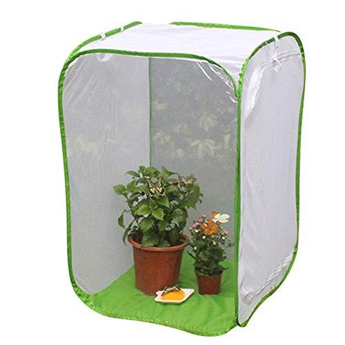 Tienda de campaña de invernadero para plantas, malla para insectos, jaula plegable para insectos con cubierta y cremallera, tienda de campaña para cualquier temporada