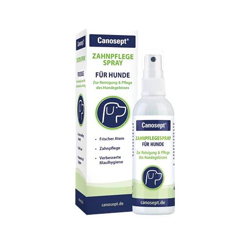 Canosept Zahnpflegespray für Hunde 100ml - Für effektive Zahnreinigung, Zahnpflege, Mundhygiene und frischen Atem - Gegen Mundgeruch - Pflegemittel & Reinigungsmittel für das Hundegebiss