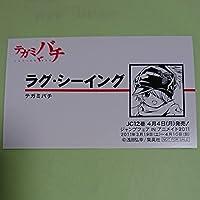 ラグシーイング 名刺型メタリックカード