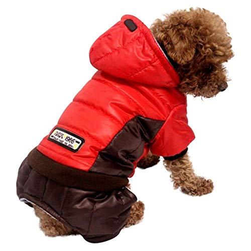 Bhu Hundemantel mit Kapuze für französische Bulldogge, 4 Beine, Baumwolle,...