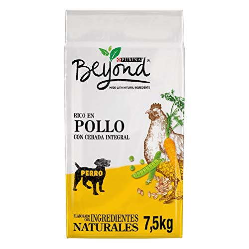 Purina Beyond Pienso Natural para Perro Adulto Pollo y Cebada Integral 7,5 Kg ✅