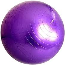 GYM EXERCISE 65CM ANTI BURST SWISS YOGA AEROBIC BODY FITNESS BALL CORE Purple