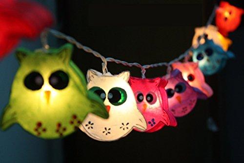 CHAINUPON Owl Bird Fancy Lanterna a Batteria luci Stringa, Patio, Fata, Decor, Soggiorno, Camera da Letto per Bambini, Ragazzo, Ragazza, Natale, Matrimonio luci, Colorful, Battery Operated 20 Lights