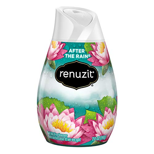 Renuzit Adjustables Air Freshener, After The Rain, 7 Ounce
