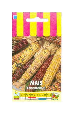 Les Graines Bocquet - Graines De Maïs Ornemental En Mélange - Graines Potagères À Semer - Sachet De 6Grammes