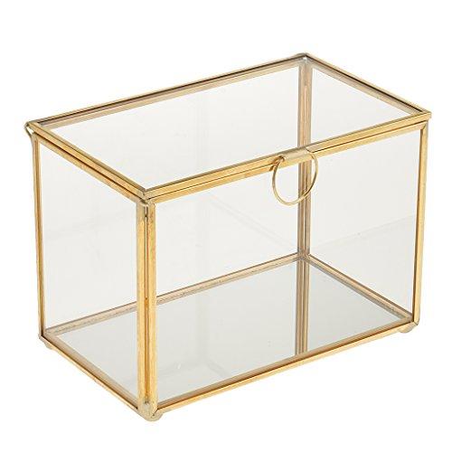 MagiDeal Caja de Plantas Suculentas Geométricas de Cristal de Caja de