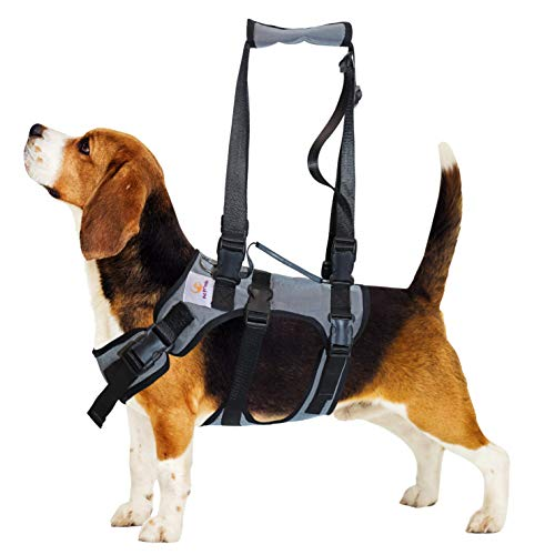 PET FRIENDZ Dog Lifting Harness for Front and Rear Legs - Dog Sling for Front and Back Legs, Rehabilitation Sling Harness, Dog Lift, Hip Support Harness to Help Lift Dogs Front and Rear - Small Breed