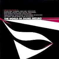 水野修孝の世界THE WORLD OF SHUKO MIZUNO