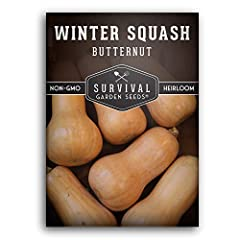 CLASSIC FLAVOR - Butternut squash is well known for the delicious flavor it adds to winter meals. Can be used as a substitute for sweet potatoes or pumpkins in winter recipes. WINTER BOUNTY - This long-lasting squash stores well and has a thick skin ...