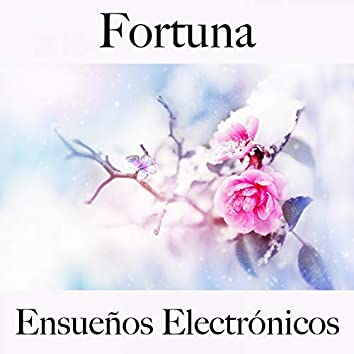 Fortuna: Ensueños Electrónicos - La Mejor Música Para Descansarse