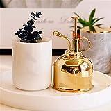 Turbobm Regaderas Latón Water Mister, Brass Golden Spray Can, Plant Spay Bottle, Brass Water Mister, Inner Flower Spray Mister 300ml