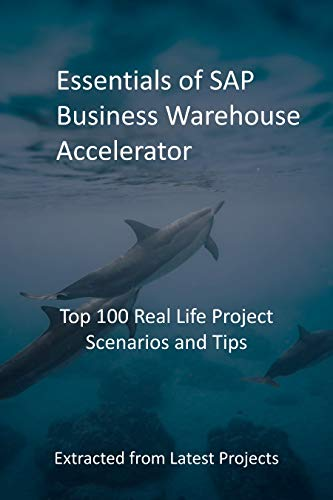 Essentials of SAP Business Warehouse Accelerator: Top 100 Real Life Project Scenarios and Tips - Extracted from Latest Projects (English Edition)