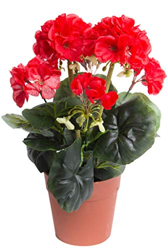 DPI künstlicher Geranienbusch mit 6 Stielen und 6 Blütenköpfen in braunem Kunststofftopf (rot -2)