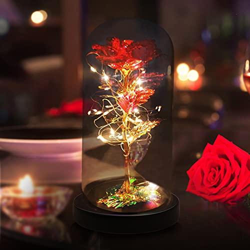 Regalos para la abuela mamá El mejor regalo para el día de la madre Día de San Valentín Enchanted Forever Rose Regalo de cumpleaños para amigos