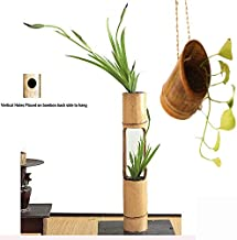 RAREPRODUCTS Rare Products Bamboo Vertical Planter with Free Vertical Hanging POTS with Bamboo Planter Hanger