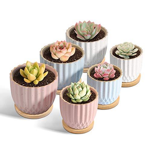 T4U Keramik Sukkulenten Topf 6er-Set Beige Rosa Blau, Klein Blumentopf Übertopf Rund für Zimmerpflanzen Kakteen Moos Innenbereich
