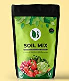 Biosephia's plant Nutrient supplement 1kg for Vegetable Plant Growth. Rich in 13 different nutrients essential for plant growth.