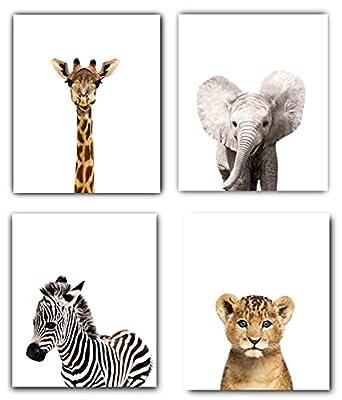 Designs by Maria Inc. Safari Baby Animals Nursery Decor Art - Set of 4 UNFRAMED Wall Prints 8x10
