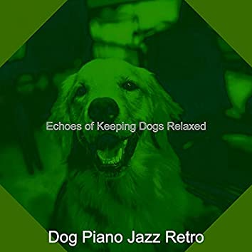 Echoes of Keeping Dogs Relaxed