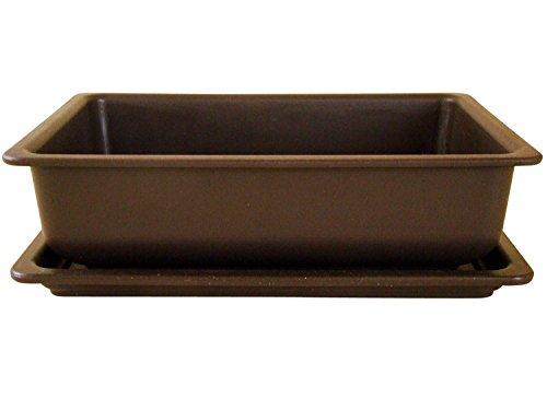 Bonsaischale aus Kunststoff mit dunkelbraunen Untersetzer Länge: 28cm - Breite: 21cm - Höhe: 8cm eckige Form