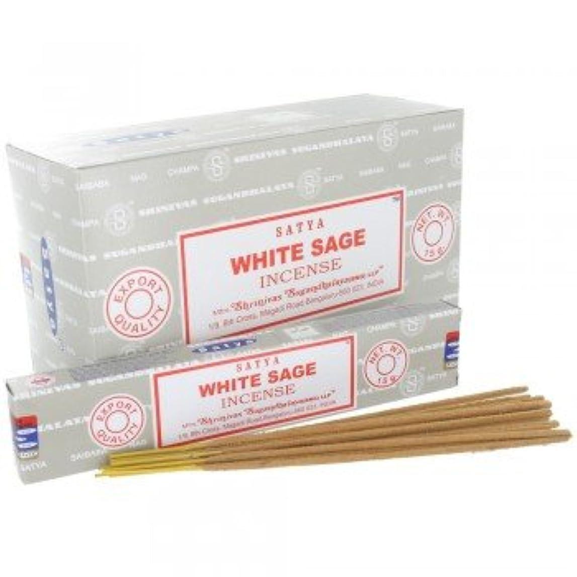 アプローチかまど丈夫SATYA WHITE SAGE ホワイトセージ 聖なる樹 浄化 お香 スティック 約15g入 (1個) [並行輸入品]