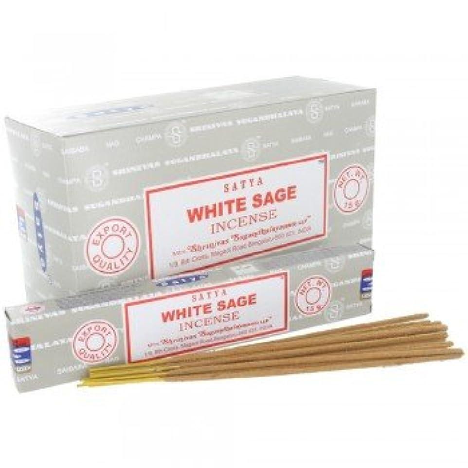 研磨剤細菌パラメータSATYA WHITE SAGE ホワイトセージ 聖なる樹 浄化 お香 スティック 約15g入 (1個) [並行輸入品]