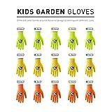 Immagine 2 handlandy guanti da giardinaggio per