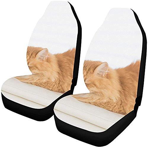 Fall Ing Autostoelhoezen stoelhoezen voorstoelen Ginger Cat slapen leer wit auto stoelhoezen autobeschermers autobeschermers geschikt voor de meeste auto's