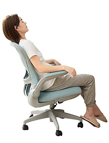 N&O Renovation House Kinder Schreibtischstuhl Computer Ergonomischer Mesh Computer Stuhl mit hautfreundlichem Mesh und 90 Grad hochklappbaren Armen für Mädchen Studie Frauen Erwachsene Büro