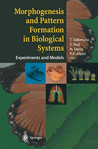 Morphogenesis and Pattern Formation in Biological Systems: Experiments and Models