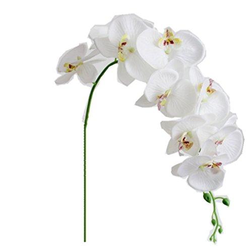 Romote 1PC Mariposa Artificial Orquídea Floral de la Flor Planta Falsa Blanca