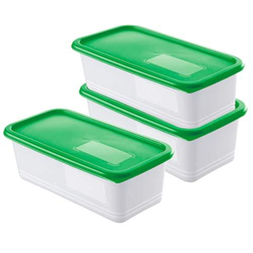 Rotho Domino 3er Set Vorratsdosen, Kunststoff (BPA-frei), grün / transparent, 3x 1.2 Liter (23,3 x 11,8 x 7,5 cm)