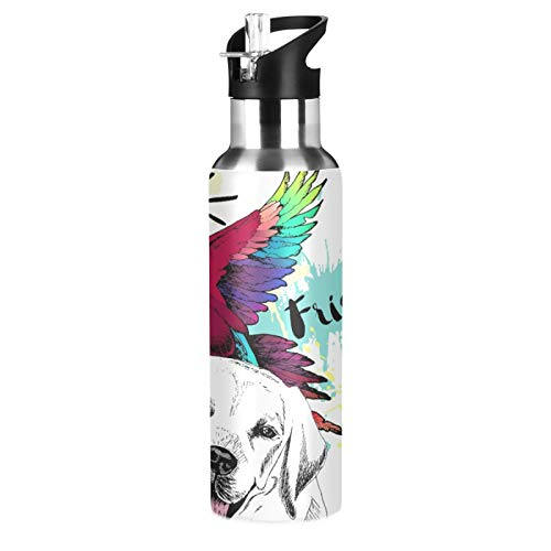 Words Best Friends Parrot And Dog Pattern Stainless Steel Insulated Sport Water Bottle for Sports, Fitness, Outdoor, Hiking, Travel - Lightweight, Unbreakable, Sustainable
