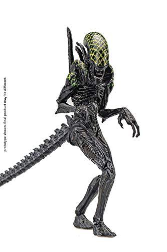 Hiya Toys Alien vs. Predator: Grid Alien 1:18 Scale Action Figure, Multicolor