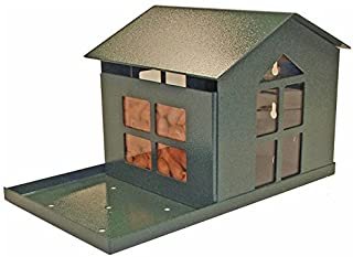 Durable Bird Proof Squirrel Feeder - If You Can't Beat Them, Feed Them