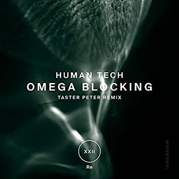 Omega Blocking