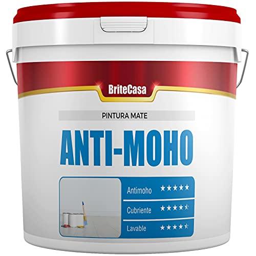 BriteCasa PINTURA ANTIMOHO 5 kg (EXTRA BLANCO, MATE) - Evita la aparición...