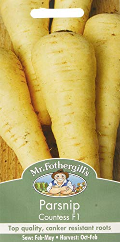 Mr Fothergill's 21806 Vegetable Seeds, Parsnip Countess F1