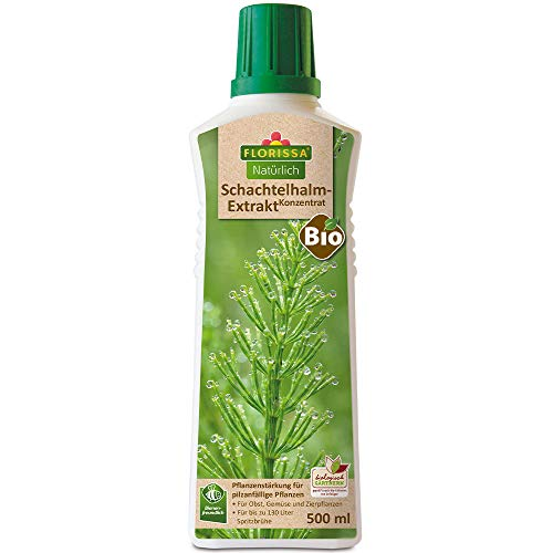 Florissa Natürlich Bio Schachtelhalm Extrakt Konzentrat | zur Vorbeugung von Pilzbefall bei Obst, Gemüse und Zierpflanzen | vorbeugend gegen Mehltau, Sternrußtau, Schorf, Grauschimmel, Krautfäule
