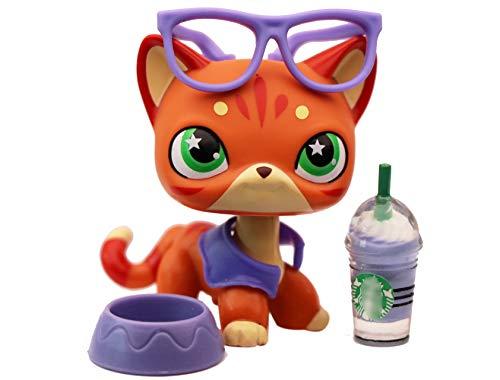 lpsloverqa Fire-Star Shorthair Cat Orange Green Star Eyes Custom Made OOAK Pets with Accessories Lot Dog Figures Collection Boys Girls Kids Gift Set (Orange)